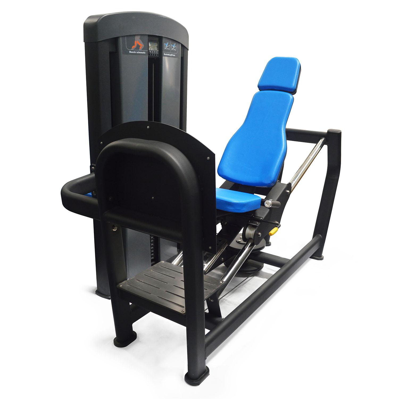 Dawson Sports Seated Leg Press